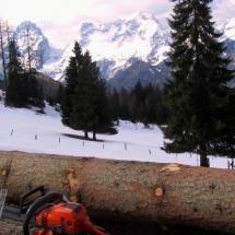 EIBL Holzhandel